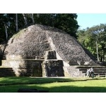 Mayan Temple at Caracol. Photo by Chris Sharpe. All rights reserved.