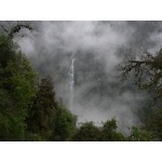 Waterfall in the mist. Photo by Rick Taylor. Copyright Borderland Tours. All rights reserved.