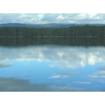 Loch Garten. Cairngorm Mountains. Photo by Rick Taylor. Copyright Borderland Tours. All rights reserved.