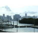 Miami Skyline. Photo by Rick Taylor. Copyright Borderland Tours. All rights reserved.
