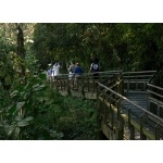 Waterfall Trail at Iguazu. Photo by Rick Taylor. Copyright Borderland Tours. All rights reserved.