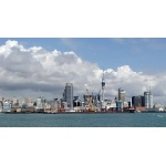 Auckland Harbour. Photo by David Semler & Marsha Steffen. All rights reserved.