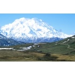Mt. McKinley in June Denali National Park Photo by Rick Taylor. Copyright Borderland Tours. All rights reserved.